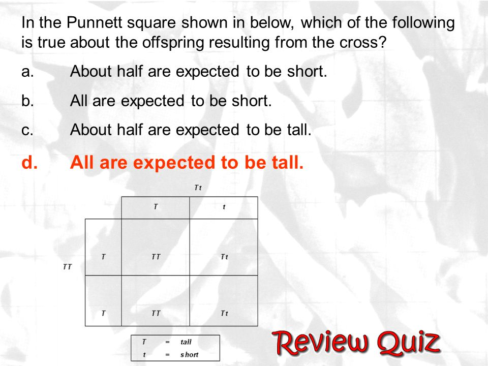 d. All are expected to be tall.