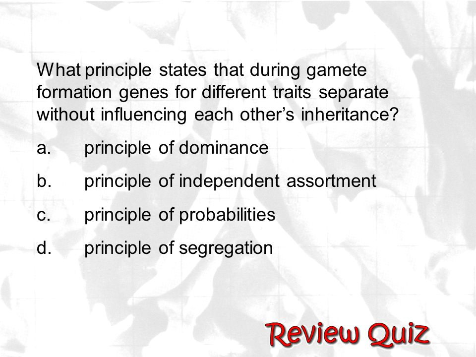 What principle states that during gamete formation genes for different traits separate without influencing each other's inheritance