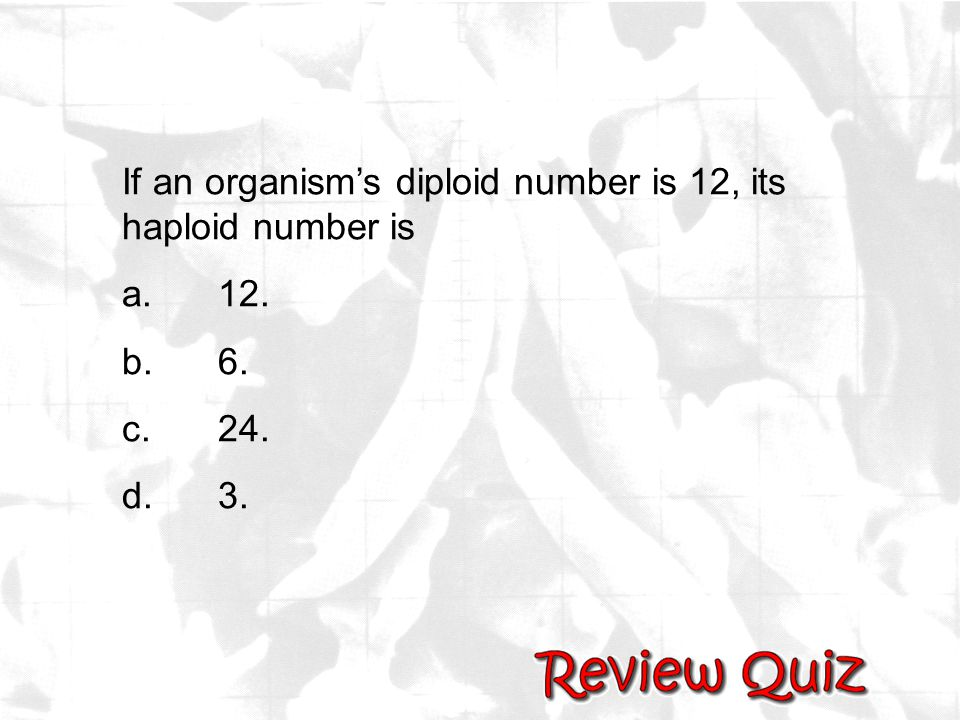 If an organism's diploid number is 12, its haploid number is