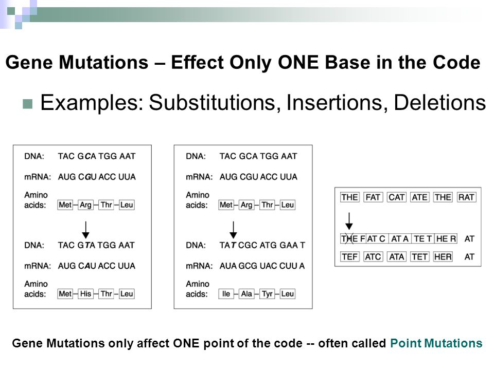 Gene Mutations – Effect Only ONE Base in the Code