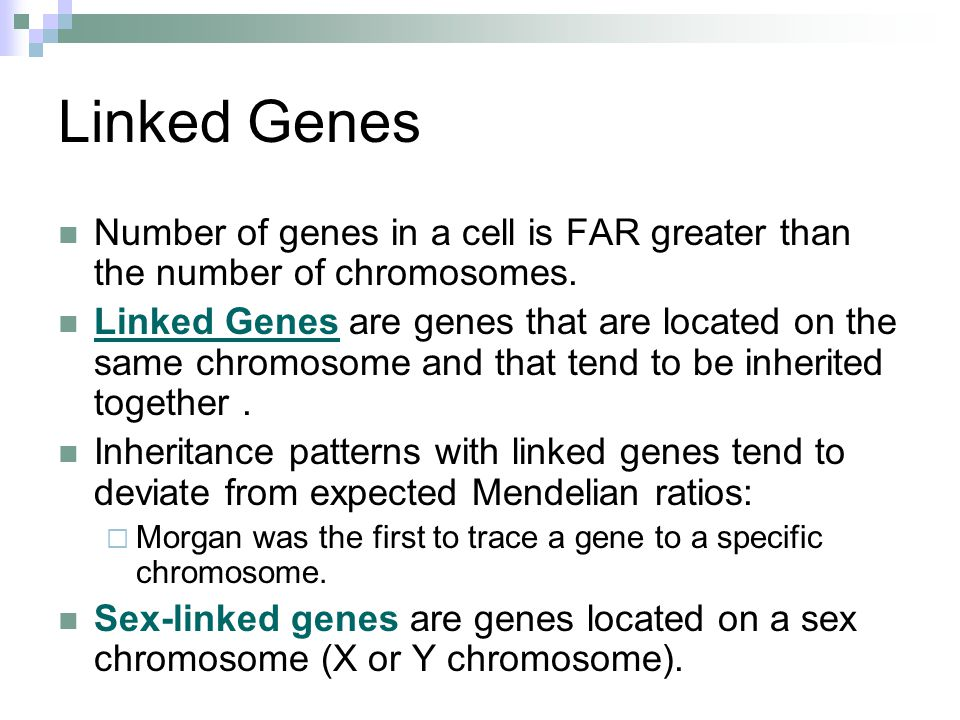Linked Genes Number of genes in a cell is FAR greater than the number of chromosomes.