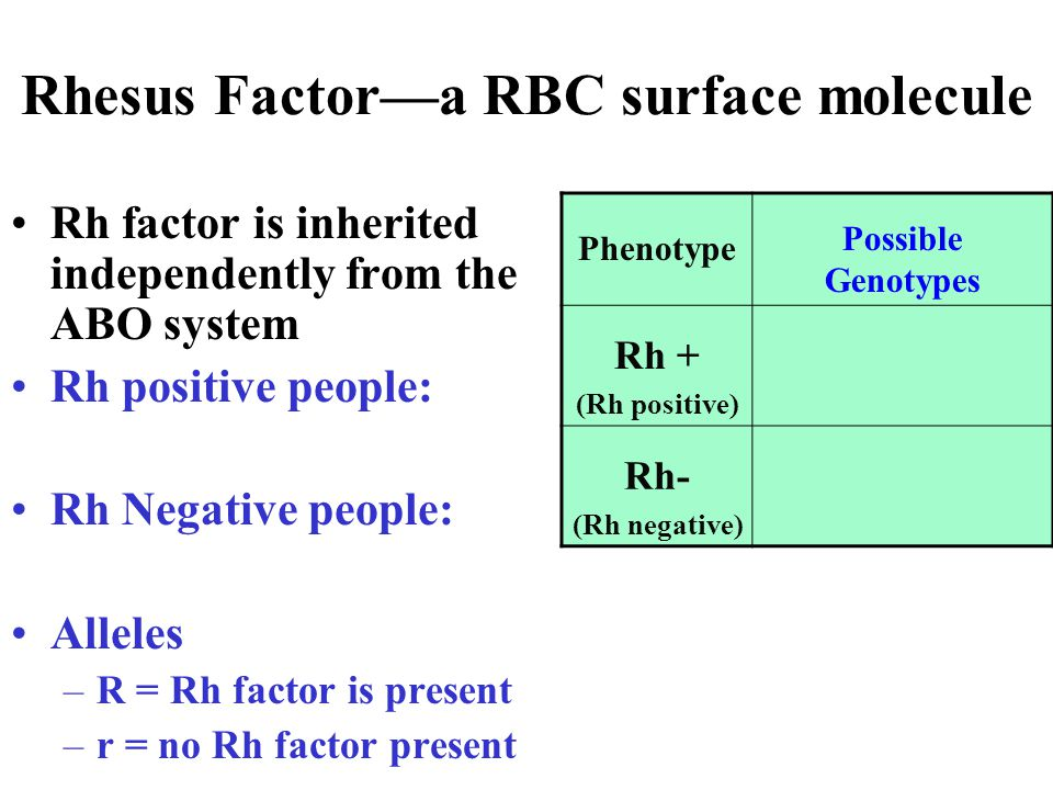 Rhesus Factor—a RBC surface molecule