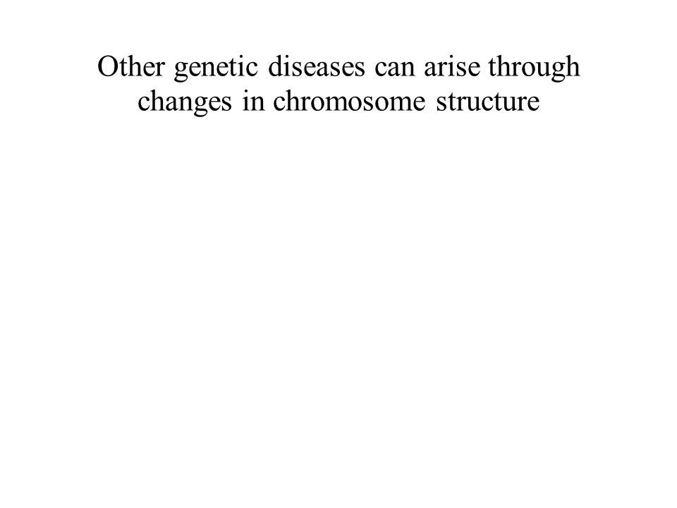 BIOL 160 Other genetic diseases can arise through changes in chromosome structure