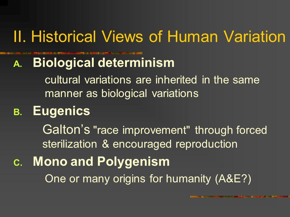 II. Historical Views of Human Variation