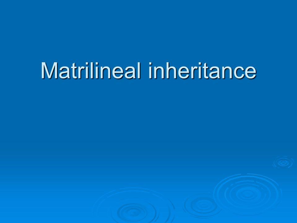 Matrilineal inheritance