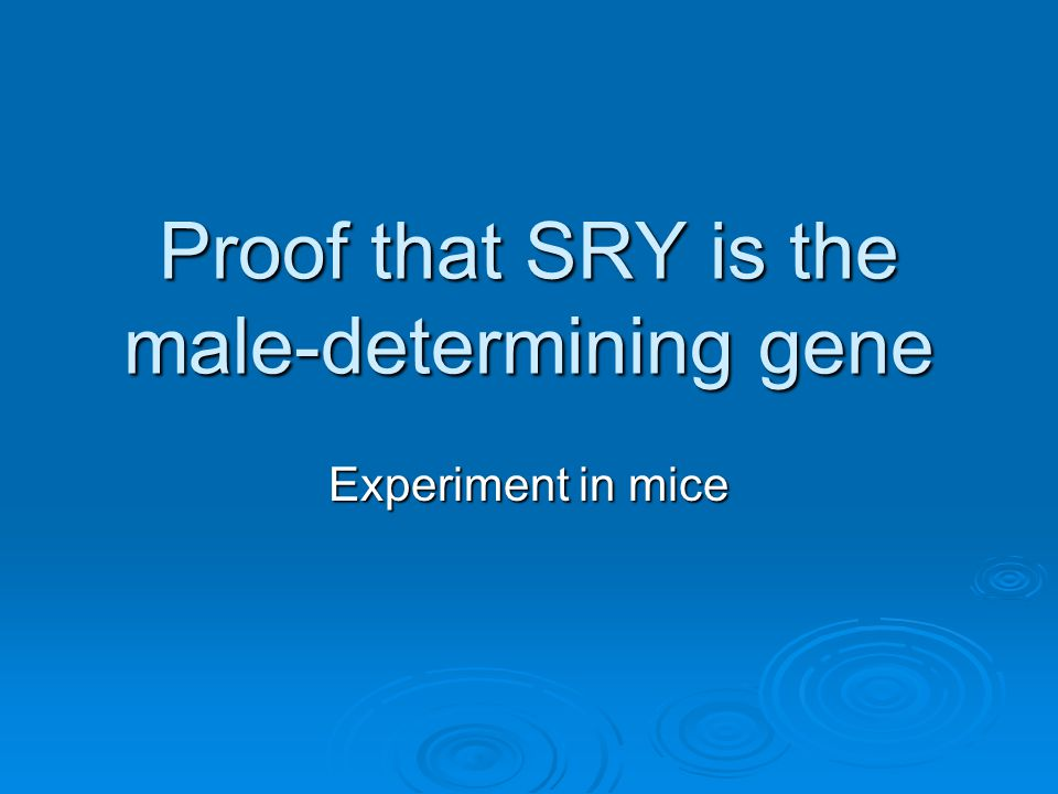 Proof that SRY is the male-determining gene