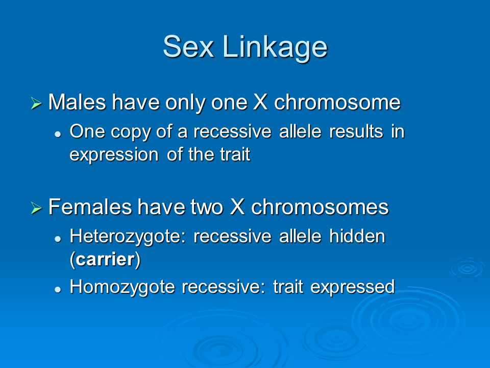 Sex Linkage Males have only one X chromosome