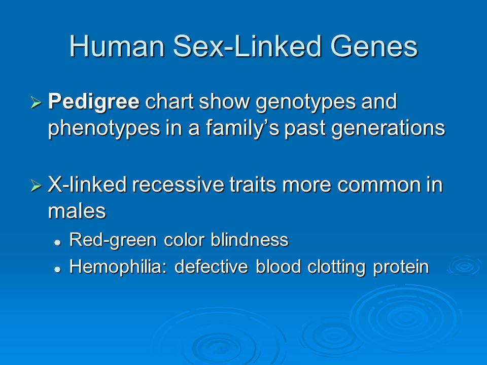 Human Sex-Linked Genes