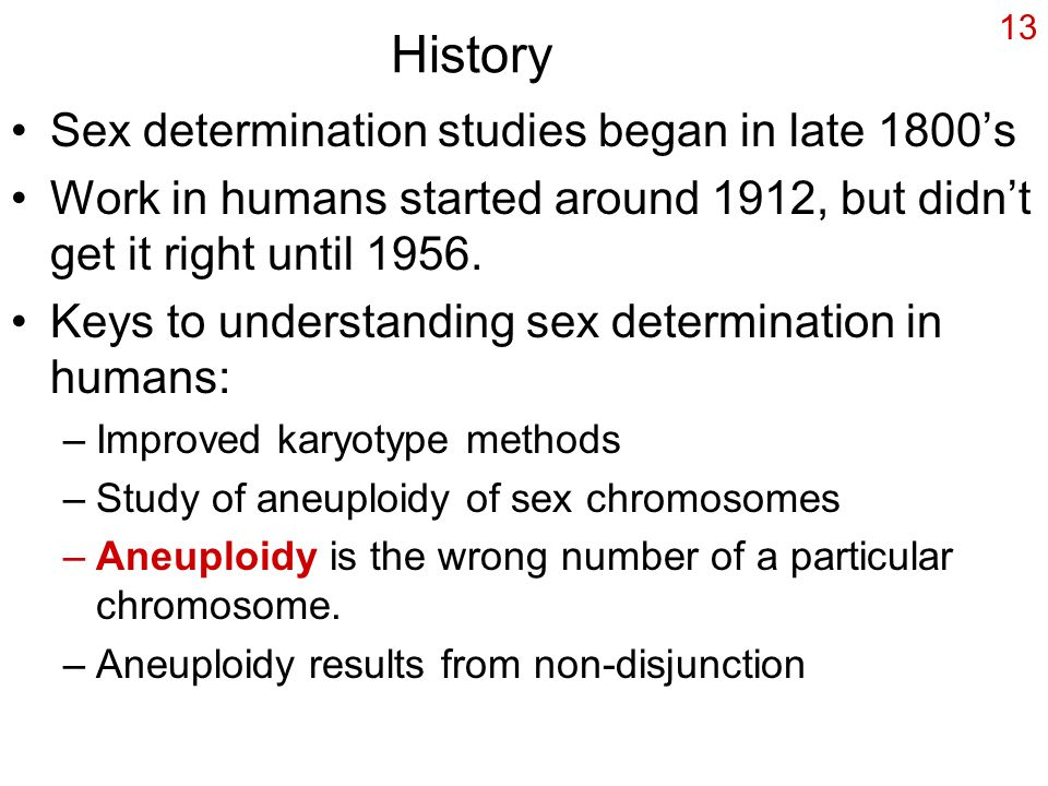 History Sex determination studies began in late 1800's