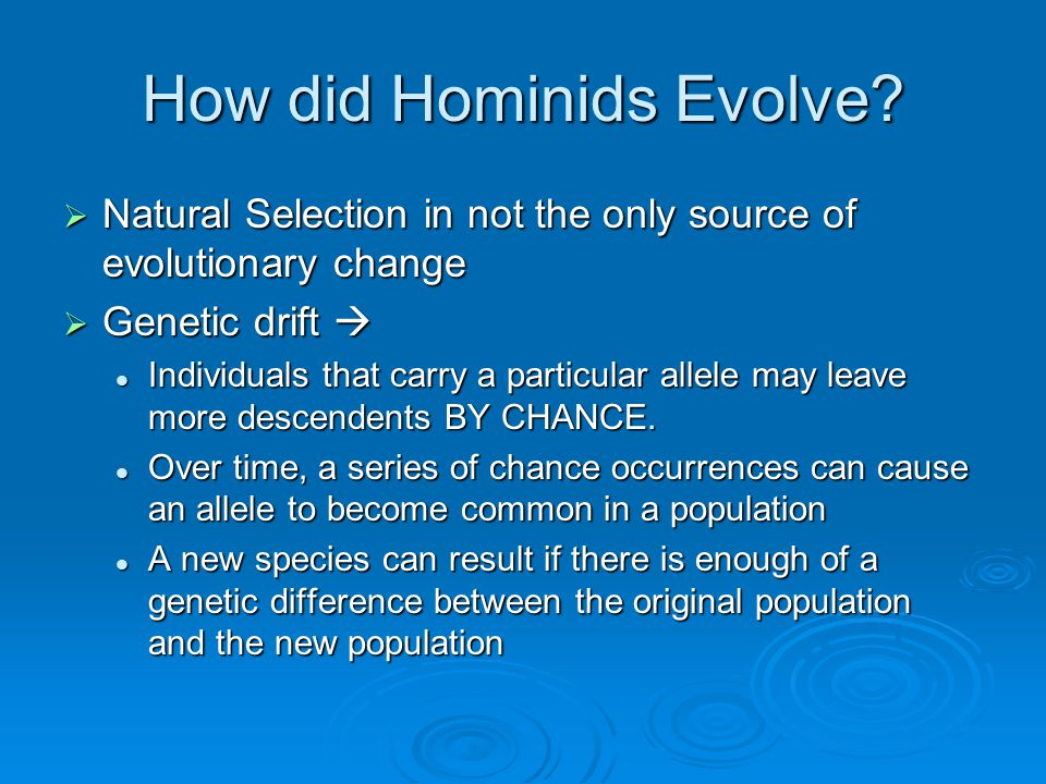 How did Hominids Evolve