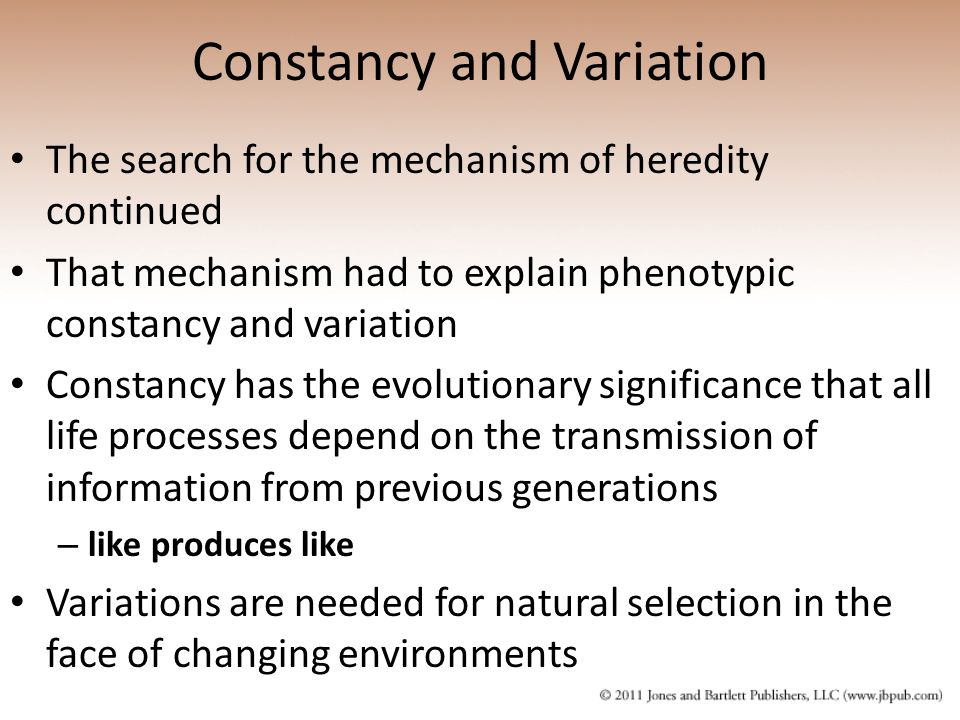 Constancy and Variation