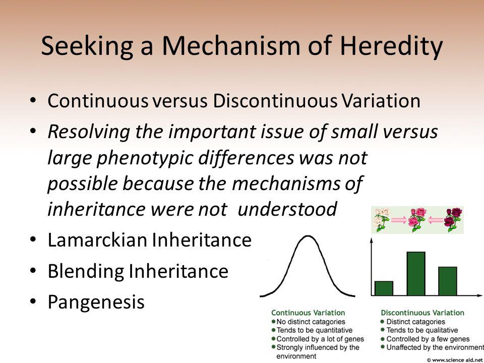 Seeking a Mechanism of Heredity