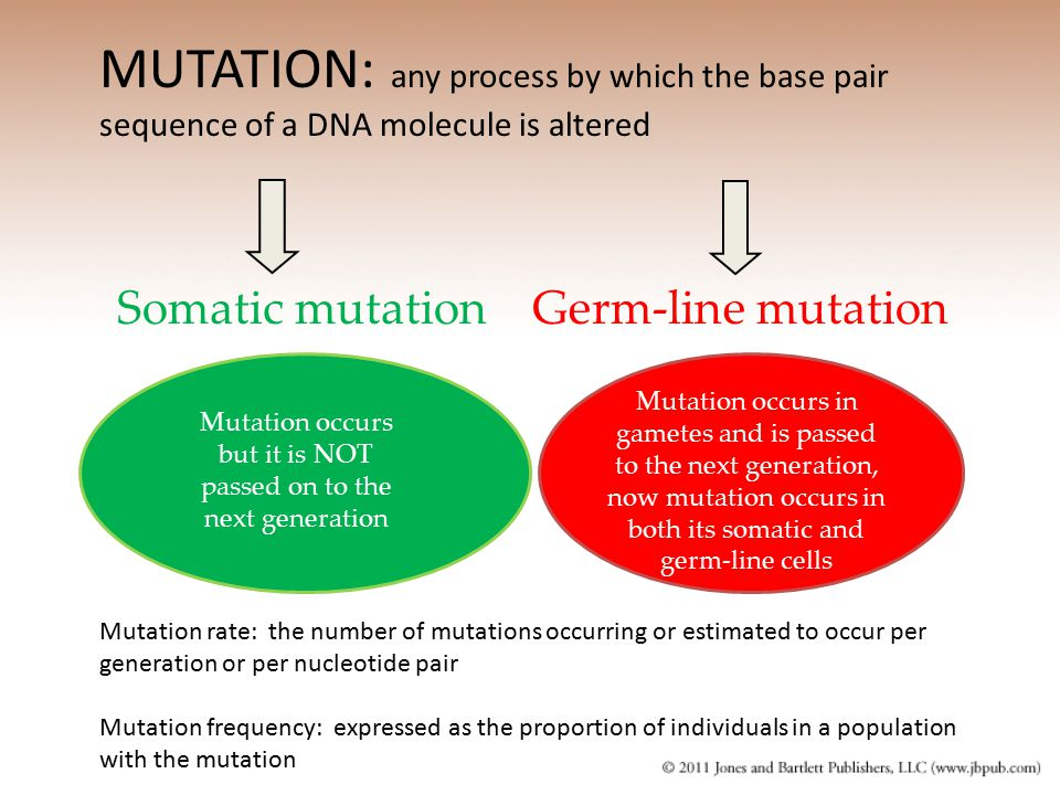 Mutation occurs but it is NOT passed on to the next generation