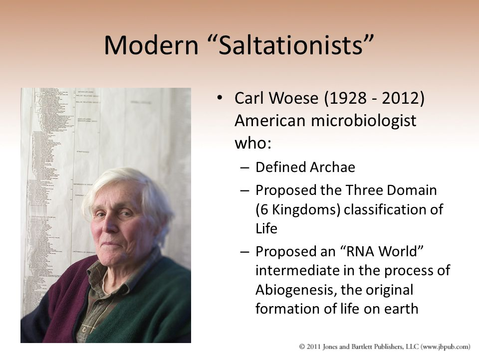 Modern Saltationists