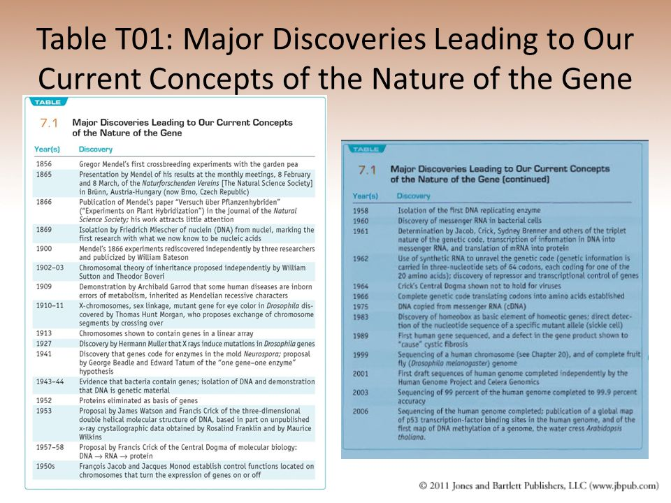 Table T01: Major Discoveries Leading to Our Current Concepts of the Nature of the Gene