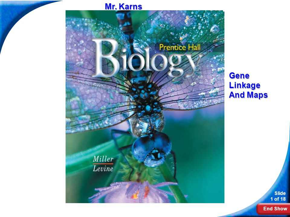 Mr. Karns Biology Gene Linkage And Maps