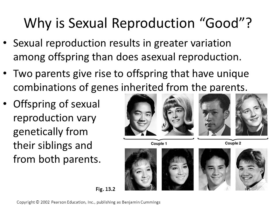 Why is Sexual Reproduction Good