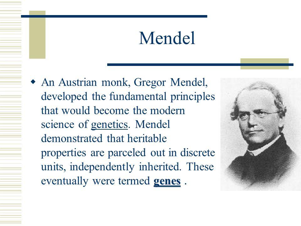 Mendel