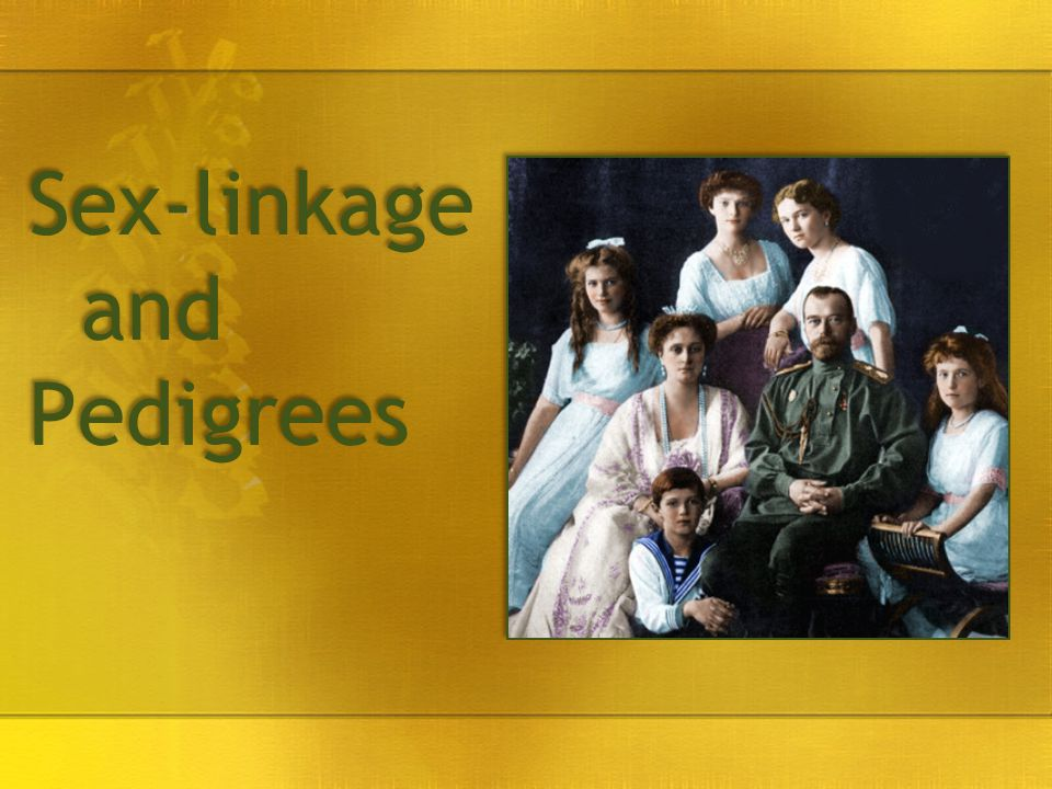 Sex-linkage and Pedigrees