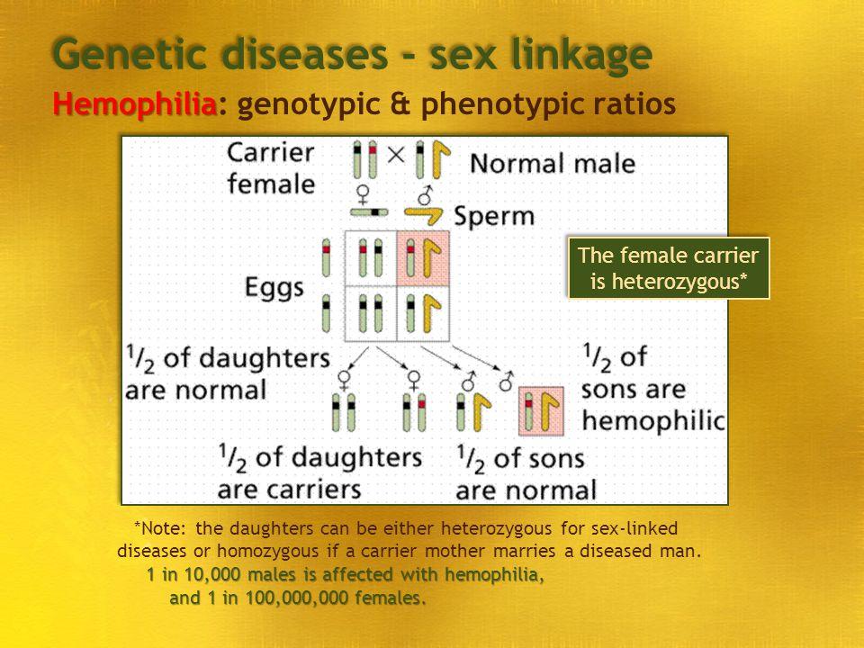 Genetic diseases - sex linkage