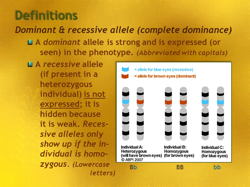Definitions Dominant & recessive allele (complete dominance)