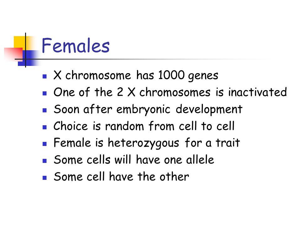 Females X chromosome has 1000 genes