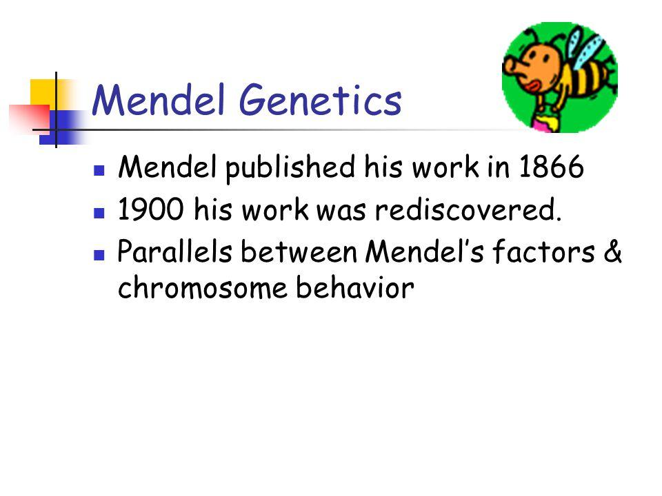 Mendel Genetics Mendel published his work in 1866