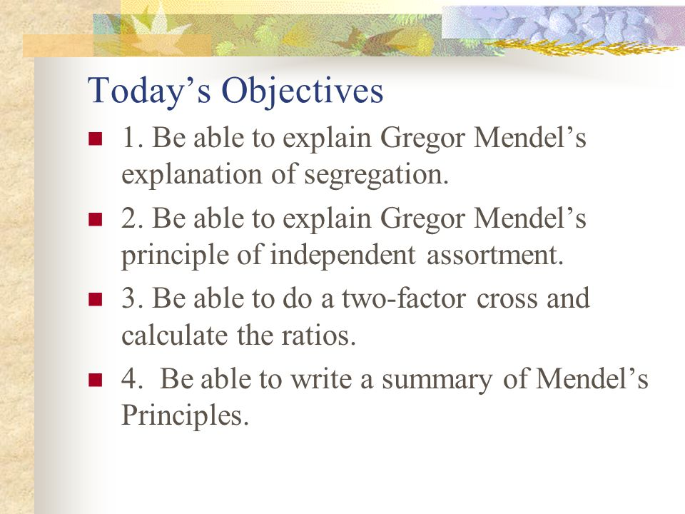 Today's Objectives 1. Be able to explain Gregor Mendel's explanation of segregation.