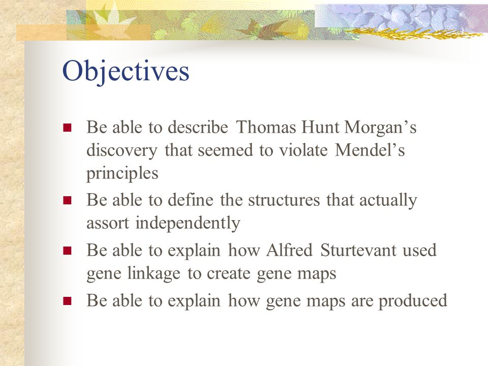 Objectives Be able to describe Thomas Hunt Morgan's discovery that seemed to violate Mendel's principles.