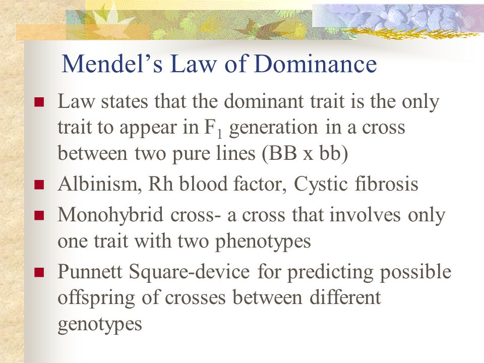 Mendel's Law of Dominance