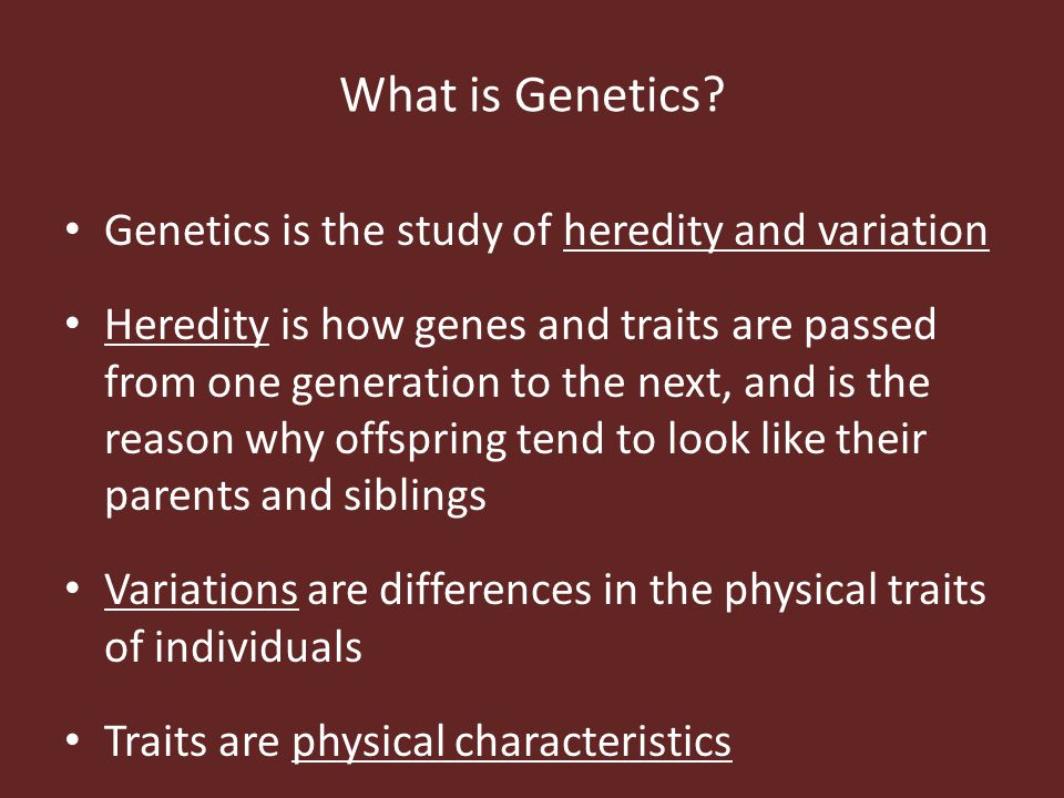 What is Genetics Genetics is the study of heredity and variation