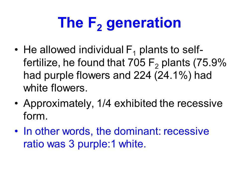 The F2 generation