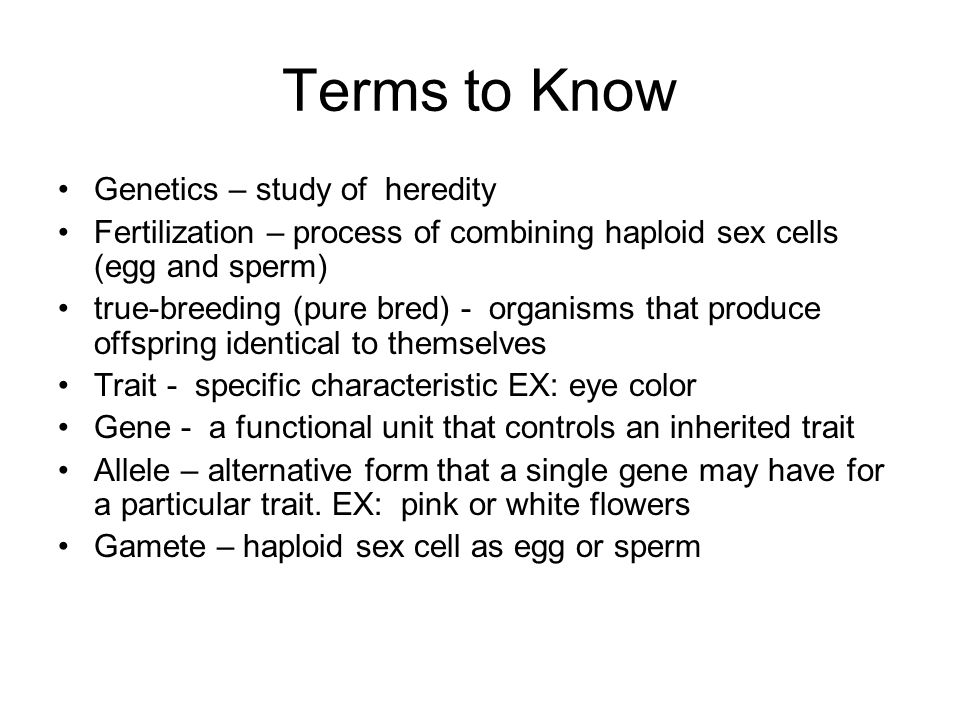 Terms to Know Genetics – study of heredity