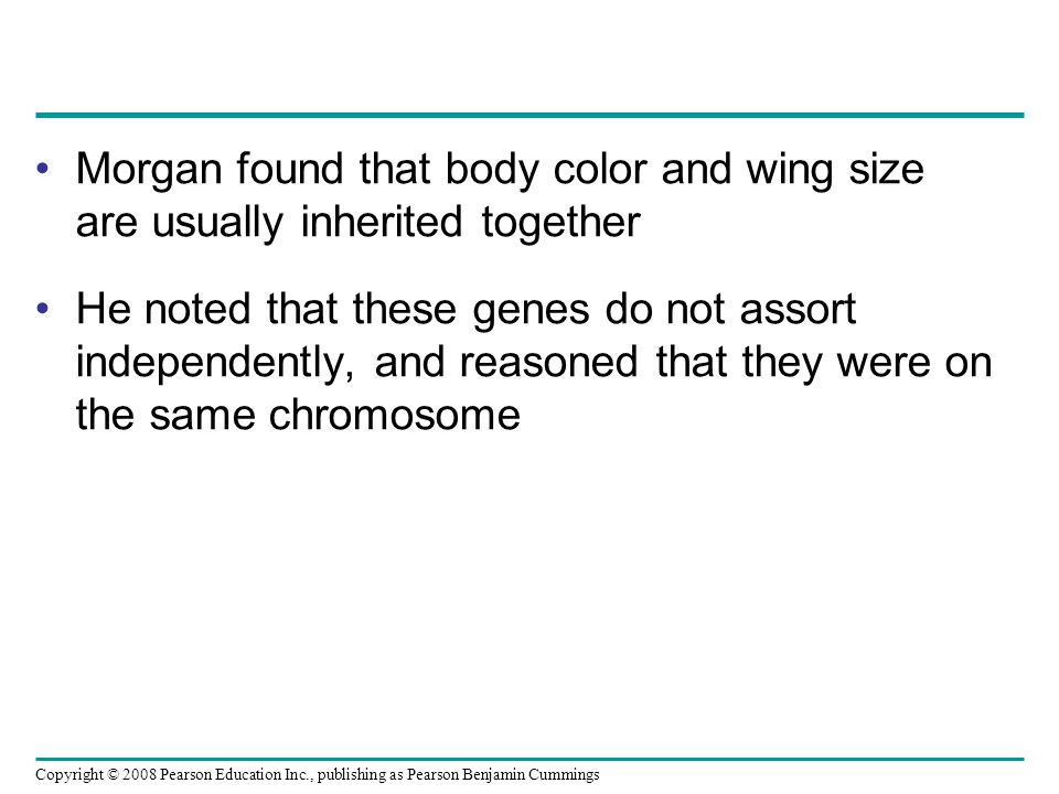 Morgan found that body color and wing size are usually inherited together