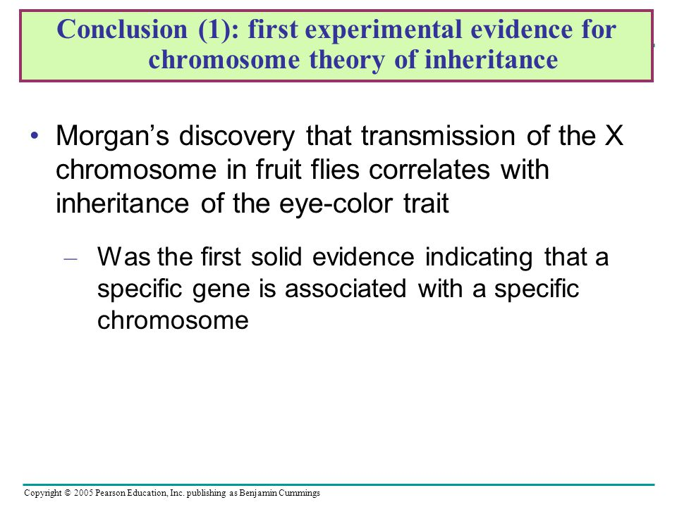 Conclusion (1): first experimental evidence for chromosome theory of inheritance