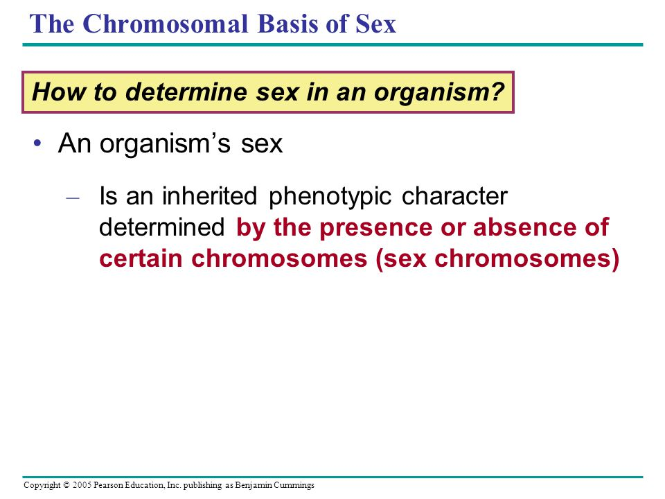 The Chromosomal Basis of Sex