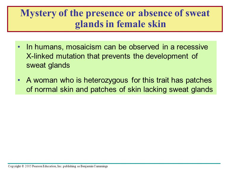 Mystery of the presence or absence of sweat glands in female skin