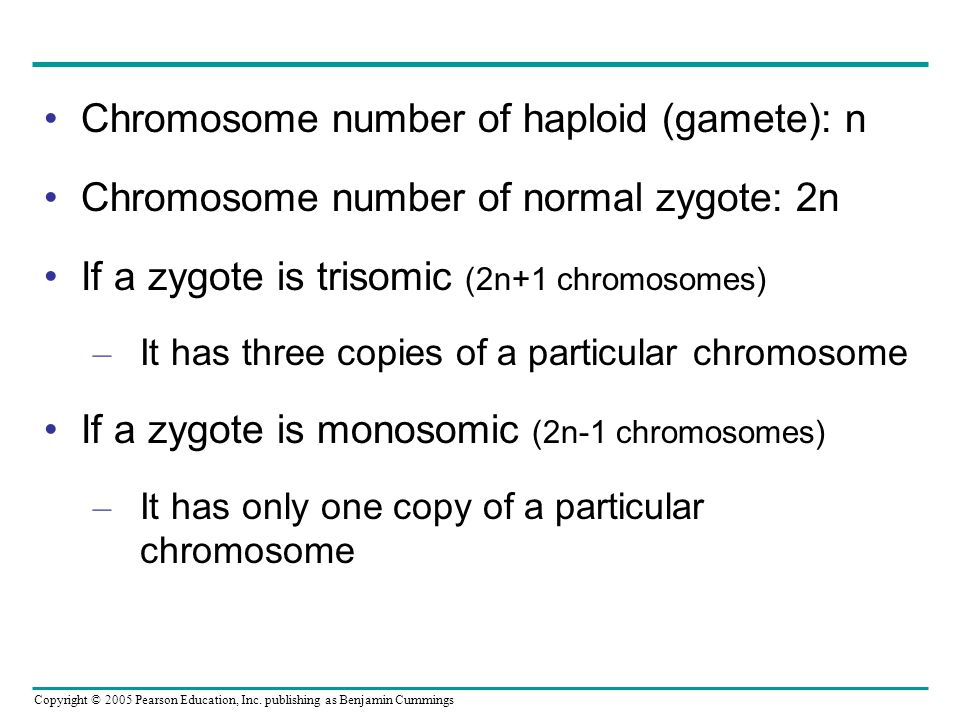 Chromosome number of haploid (gamete): n