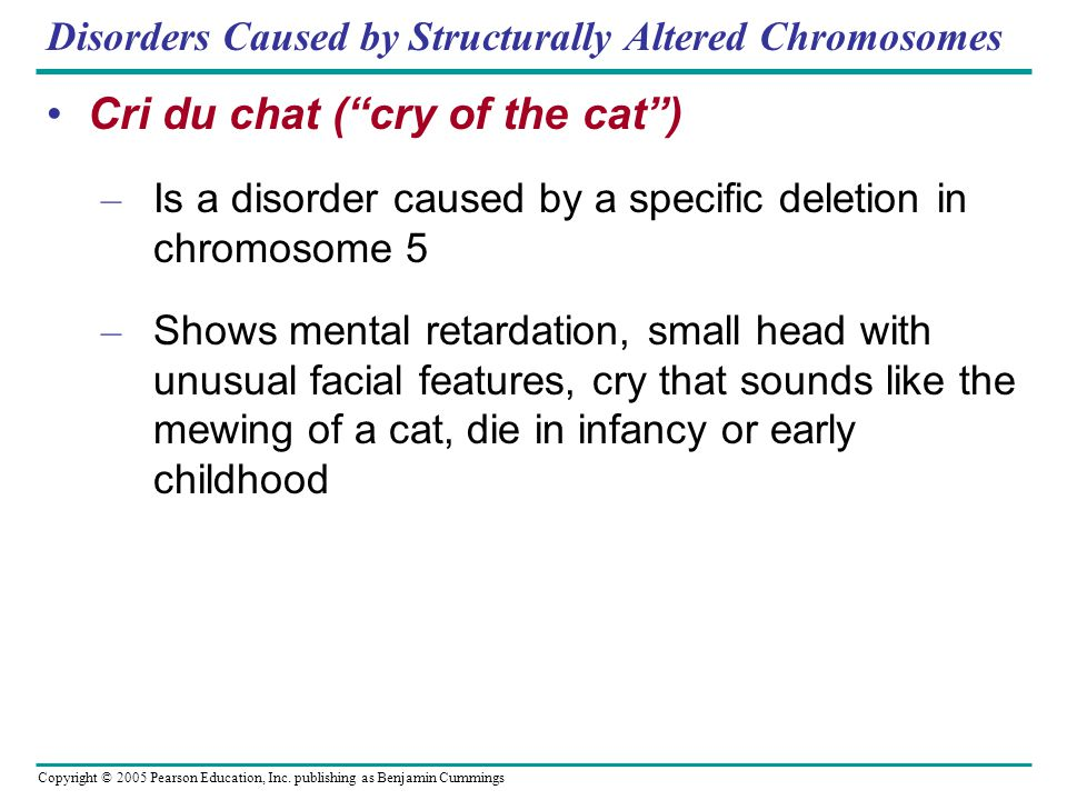 Disorders Caused by Structurally Altered Chromosomes