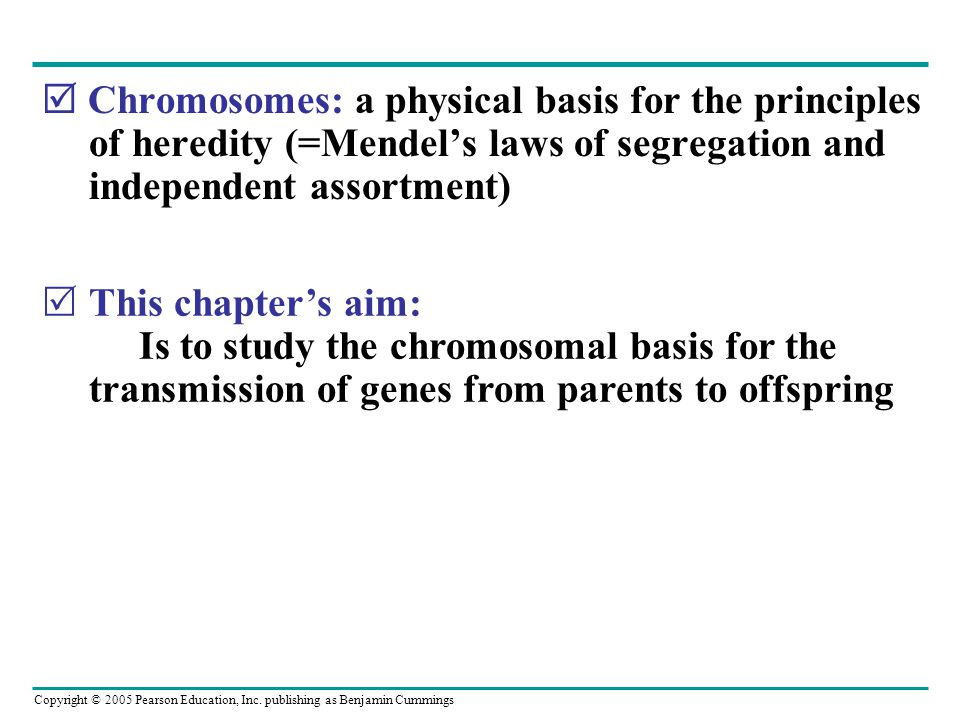  Chromosomes: a physical basis for the principles of heredity (=Mendel's laws of segregation and independent assortment)