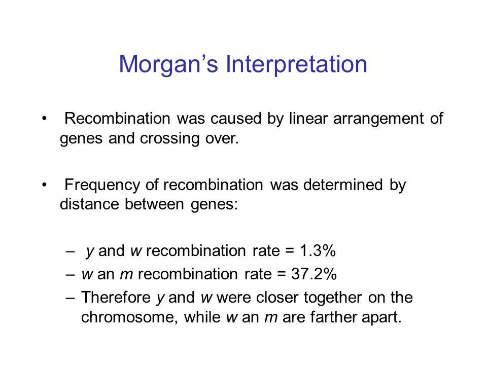 Morgan's Interpretation