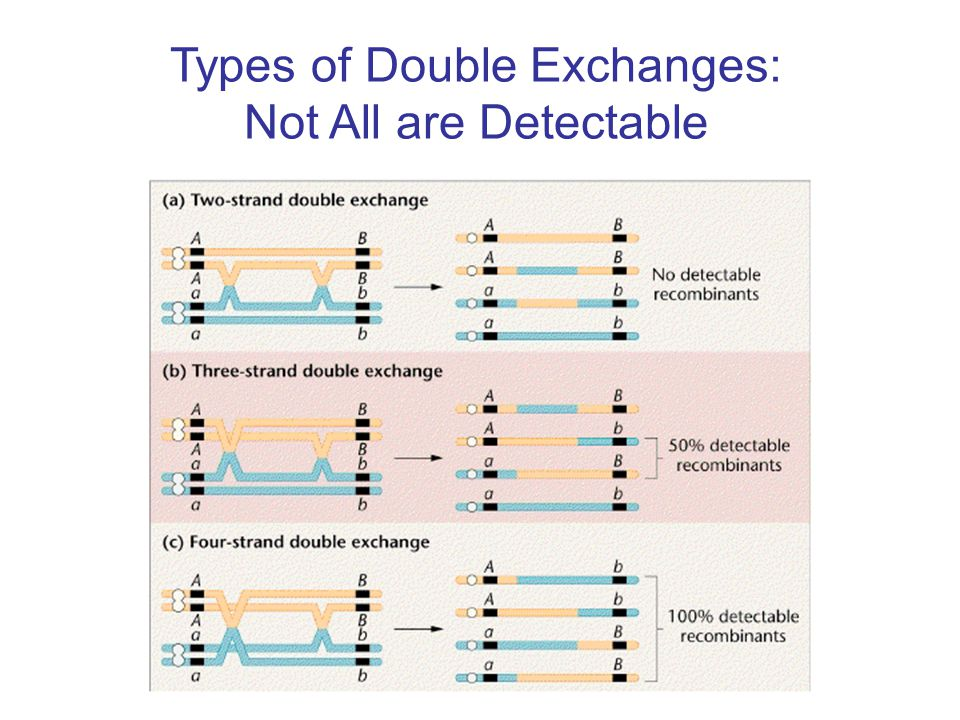 Types of Double Exchanges: Not All are Detectable