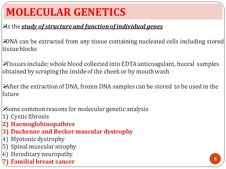 MOLECULAR GENETICS Is the study of structure and function of individual genes.