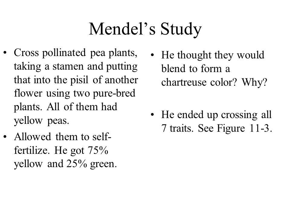 Mendel's Study
