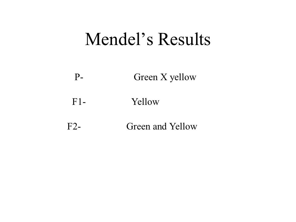 Mendel's Results P- Green X yellow F1- Yellow F2- Green and Yellow