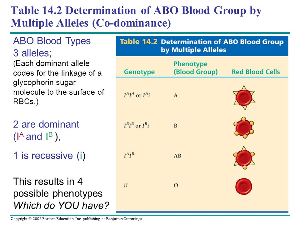 Table 14.2 Determination of ABO Blood Group by Multiple Alleles (Co-dominance)