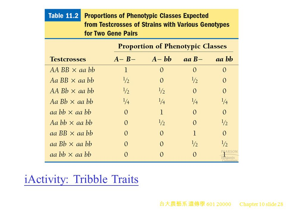 iActivity: Tribble Traits