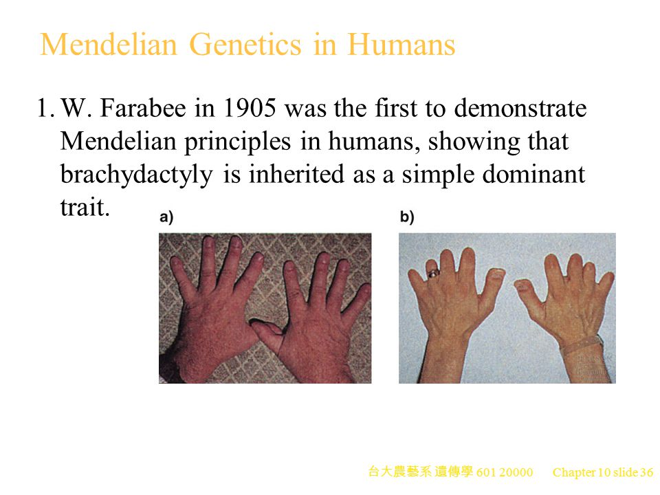 Mendelian Genetics in Humans