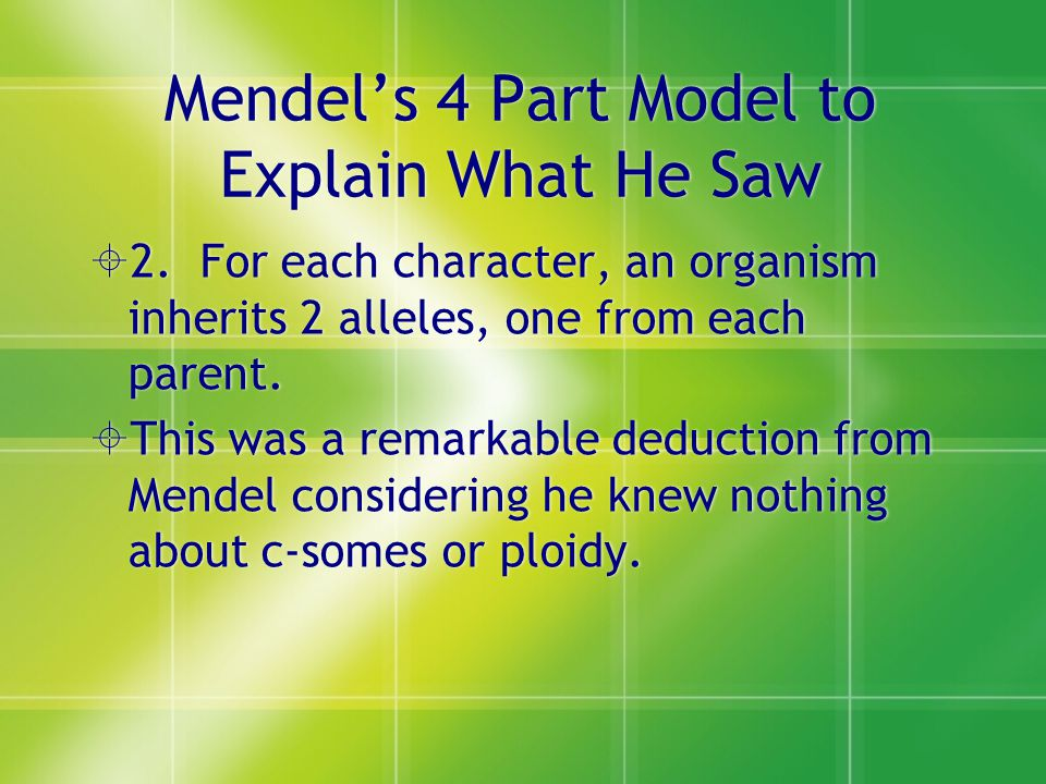 Mendel's 4 Part Model to Explain What He Saw
