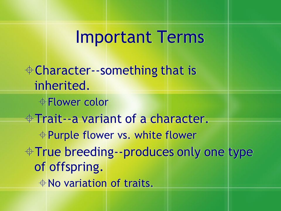 Important Terms Character--something that is inherited.